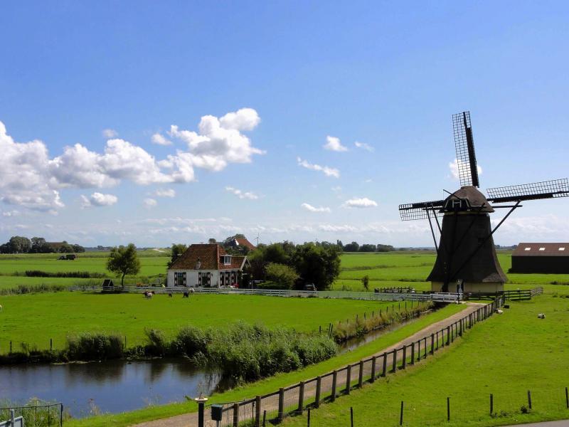 Benelux körutazás (Tavasszal tulipán virágzáskor)