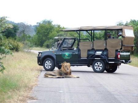 Johannesburg - Kruger Nemzeti Park - Sun City
