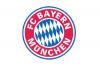 Bayern - Hoffenheim utaz�s, rep�l�vel