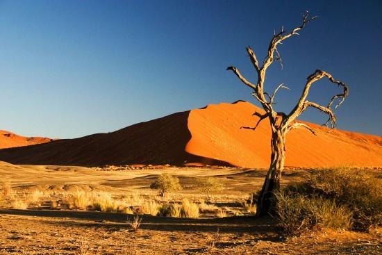 Namíbia - Botswana - Zimbabwe