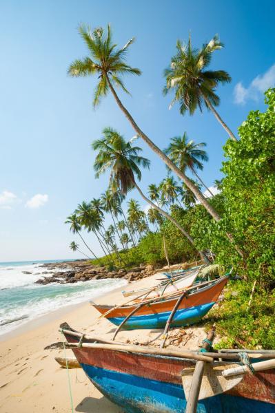 Szilveszter Srí Lankán