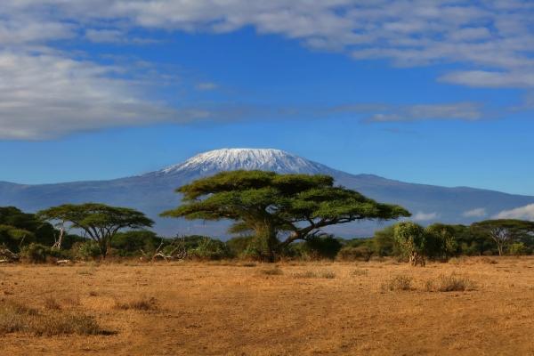 Intenzív szafari Kenyában