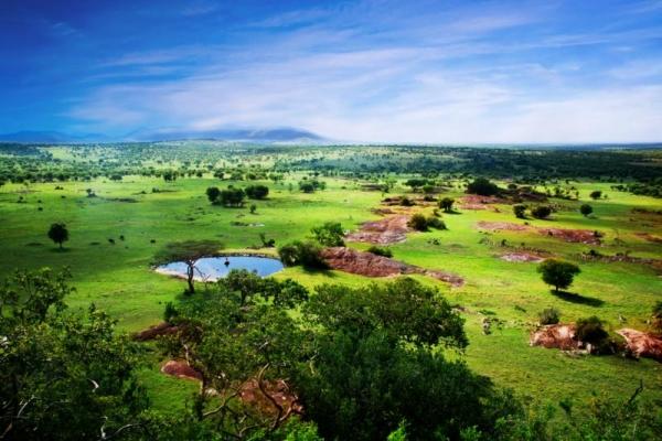 Tanzánia felfedezés
