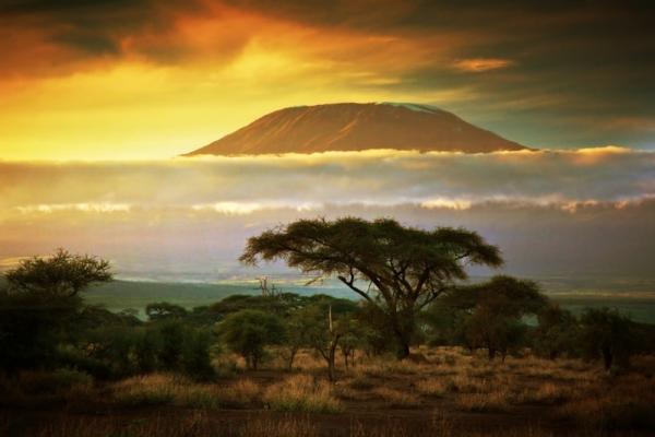 Kelet-Afrika legjava