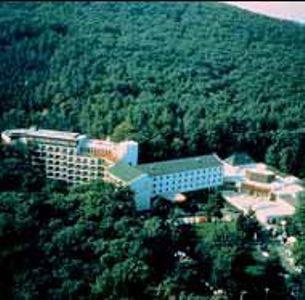 Danubius Hotel Lővér ****