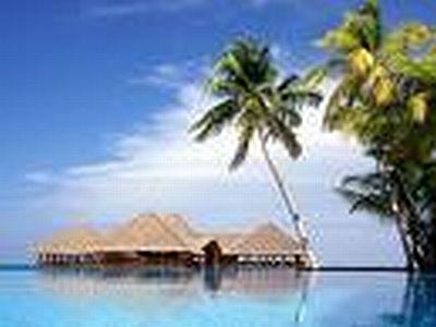 Paradise Island ****