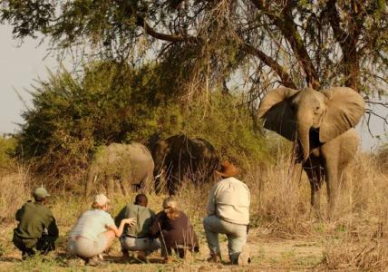 Botswana-Zimbabwe-Zambia-Namibia-Dél-Afrika Januárban