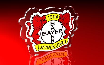 Bayer Leverkusen-Manchester United 2013.11.27. BL