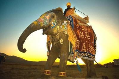 India, királyi Rádzsaszthán