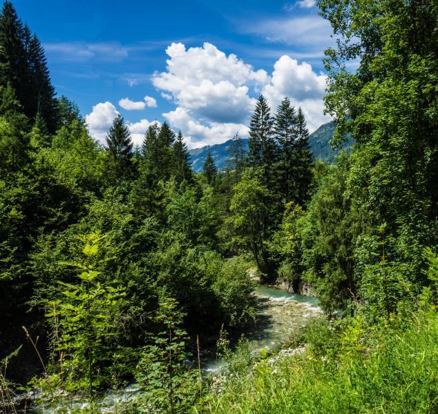 Bajorország látnivalói|9