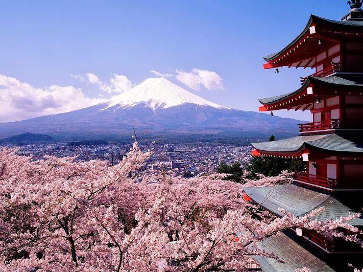 Sakura: japán körutazás cseresznyevirágzáskor
