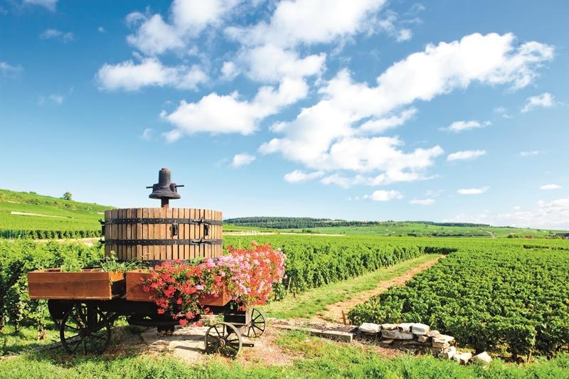 Burgundia-Elzász és az Alpok