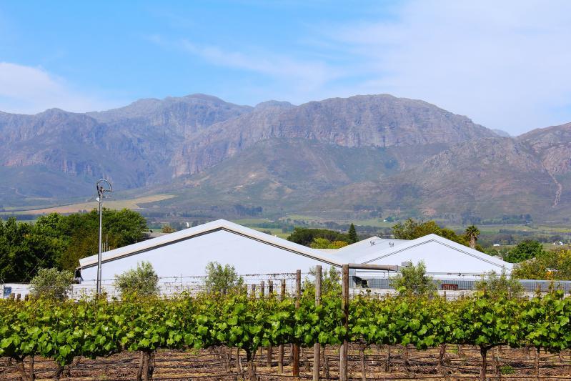 Egzotikus körutazás Dél-Afrikába|2