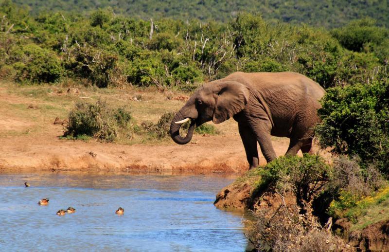 Egzotikus körutazás Dél-Afrikába|5