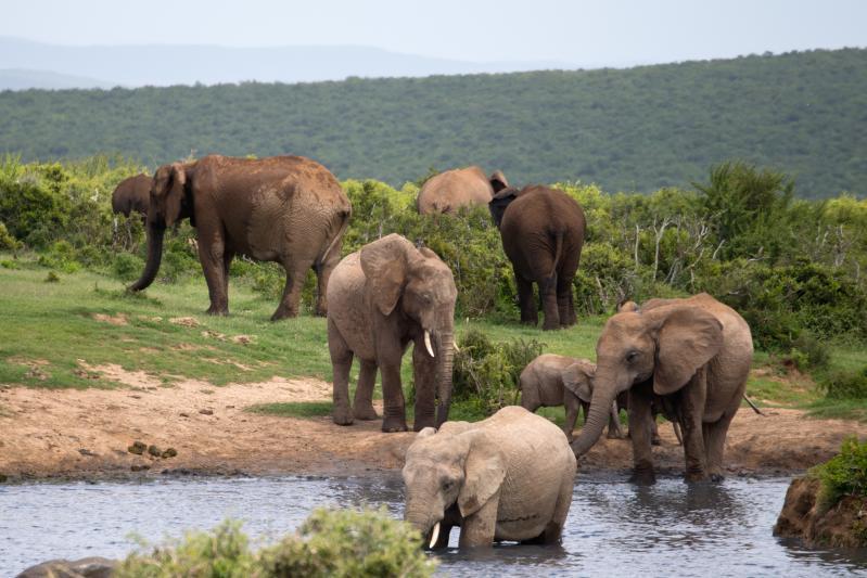 Egzotikus körutazás Dél-Afrikába|3