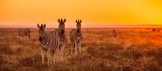 Namíbiai körutazás - Exkluzív kiscsoportos utazás!