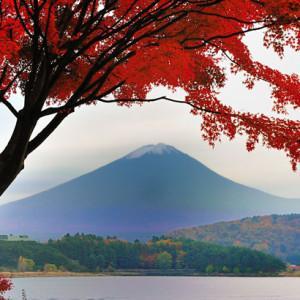 Momiji: őszi nagykörút Shikoku érintésével