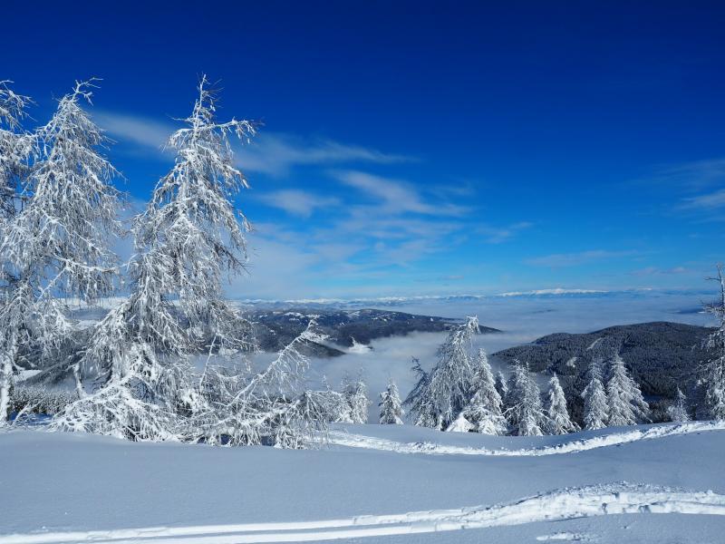 Alpok vidéke