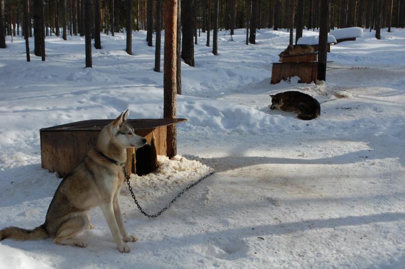Lappföld és az Északi-fok hóbirodalma