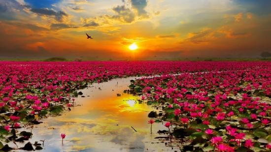 Laosz csodái és Thaiföld kitaposatlan ösvényei