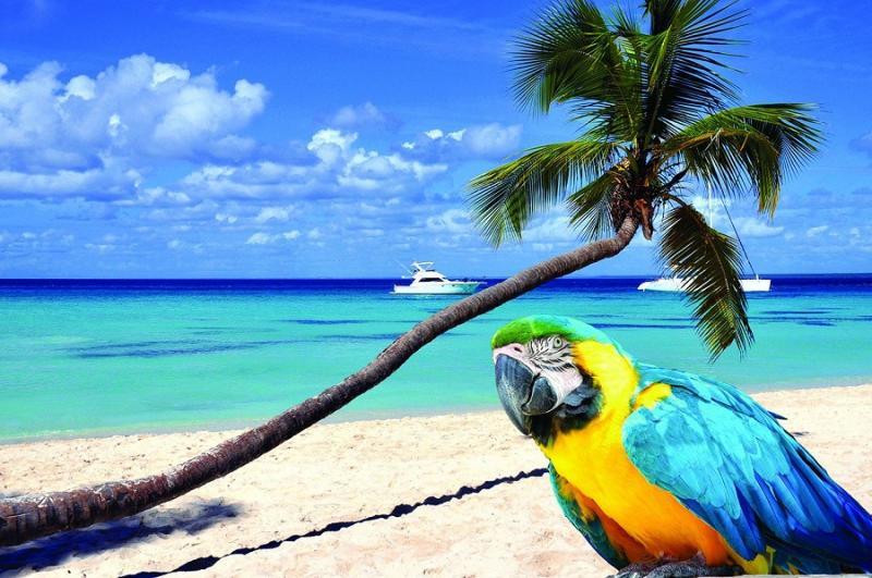 Csoportos hajóút - Karibi kincsvadászat - Előfoglalási kedvezmény - 2019. január