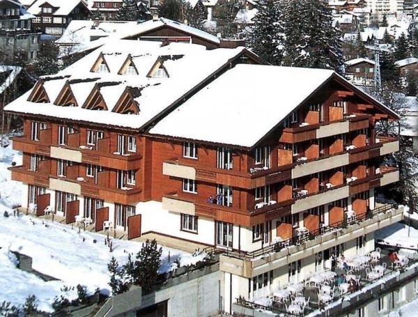 Hotel Steinmattli **** - Adelboden
