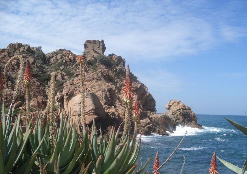 Korzika, a Földközi-tenger gyöngyszeme, szardíniai kirándulással
