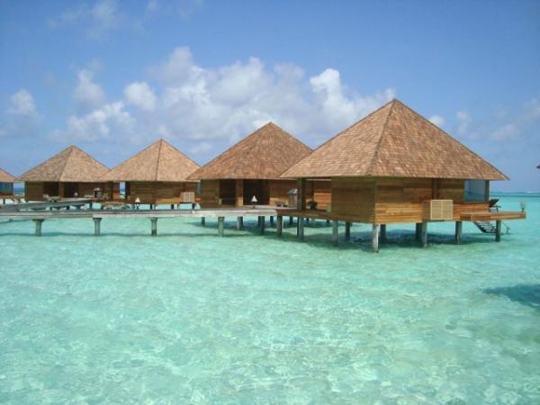 Maldív-szigetek - Gangehi Island Resort ***** - North Ari Atoll (Egyéni)