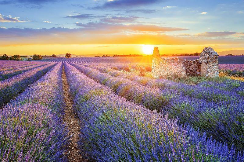 Provence és a Cote dAzur