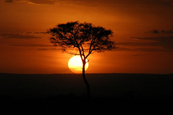 KENYA - Szafari körutazás tengerparti üdüléssel Mombasaban, a Diani tengerparton / 14 nap-13 éj (Egyéni) ****